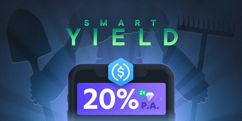 SwissBorg Smart-Yield-Konto USDC